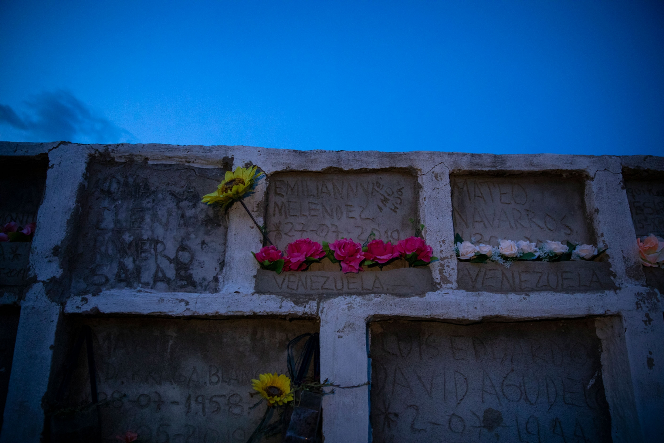 Two rows of graves are shown stacked on top of each other with several pink and yellow flowers.