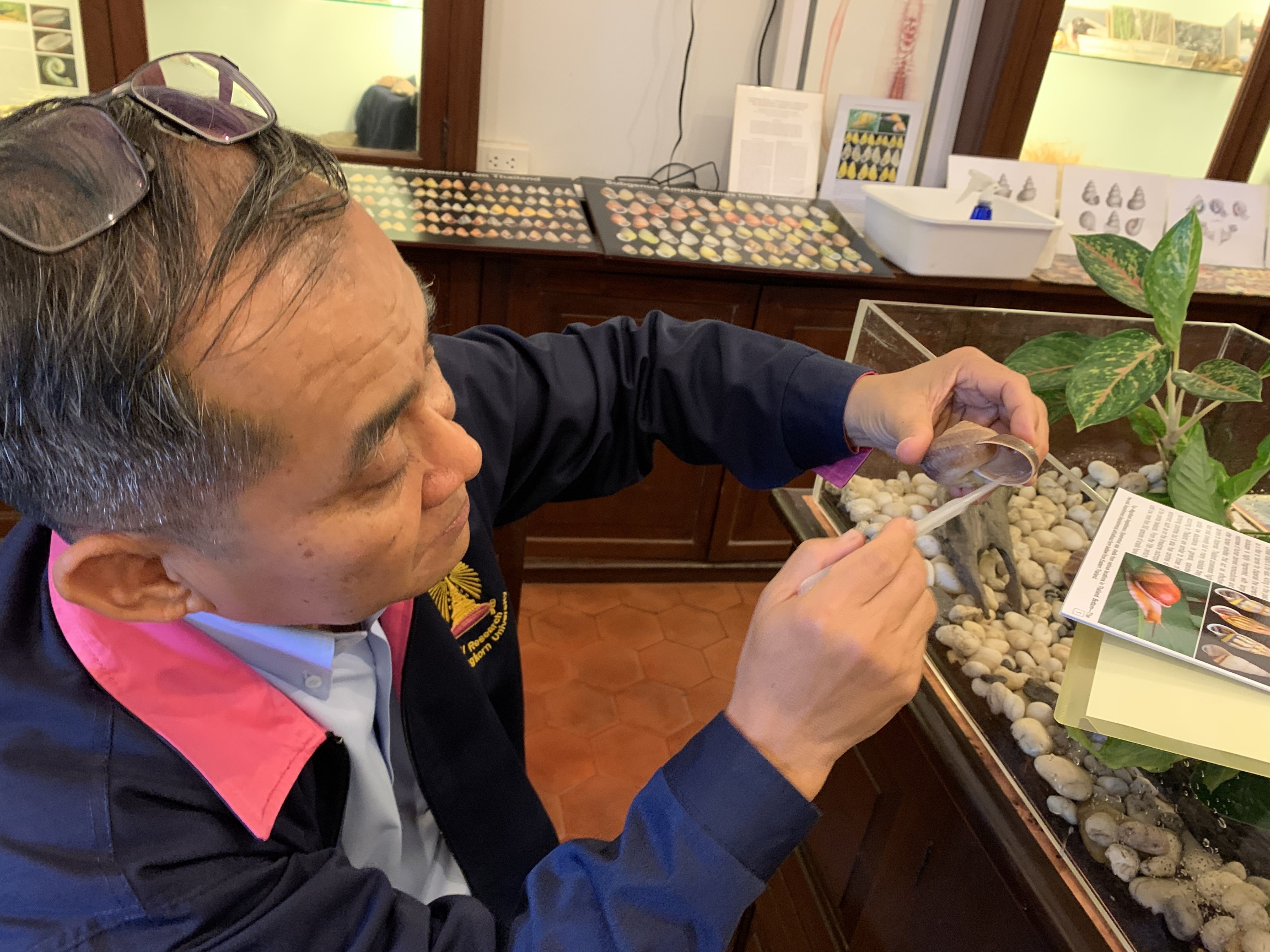Somsak Panha isa biologist who is known as Thailand's top snail guru.