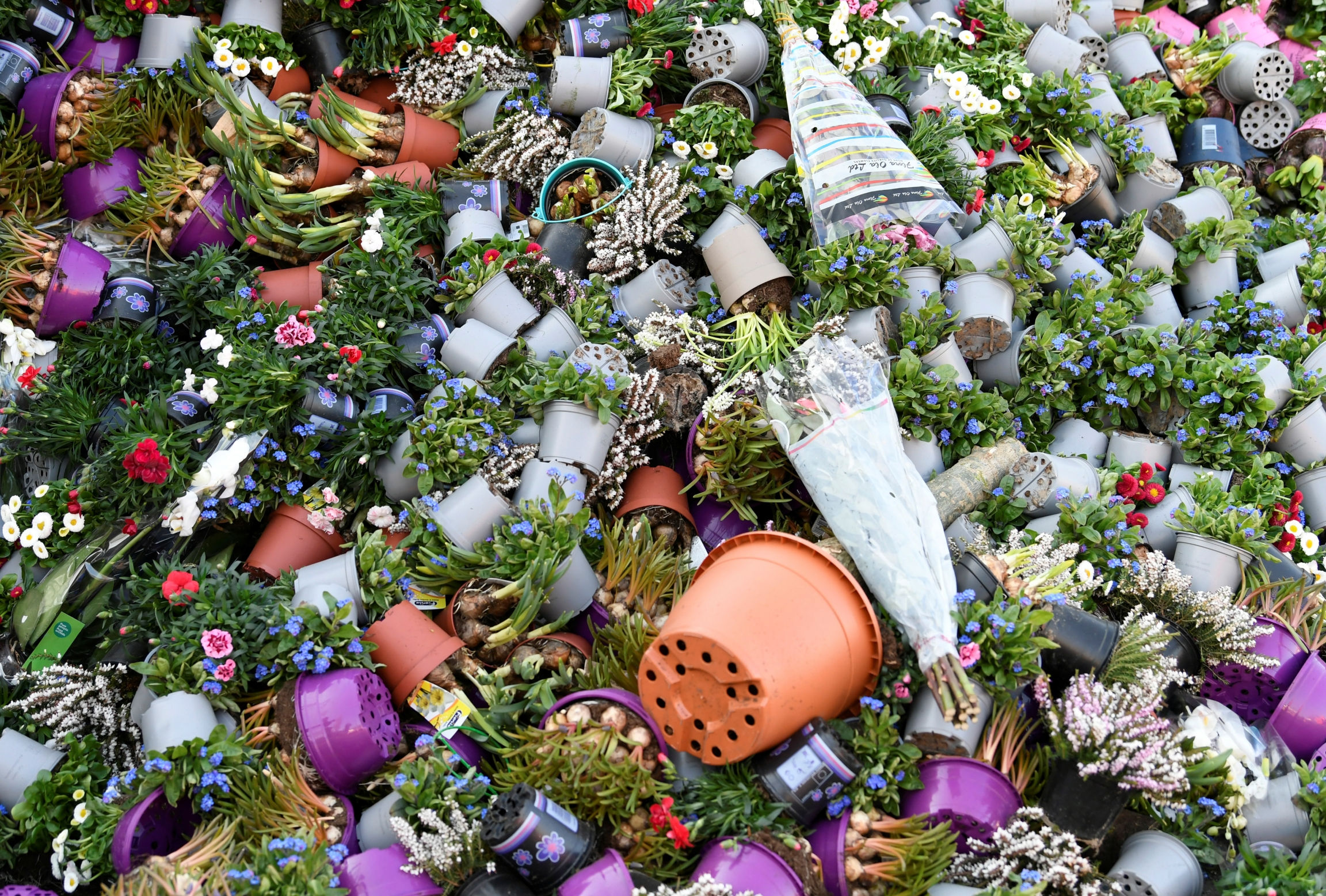Surplus flowers are destroyed at a waste place next to the flower auction in Honselersdijk, Netherlands, March 27, 2020.