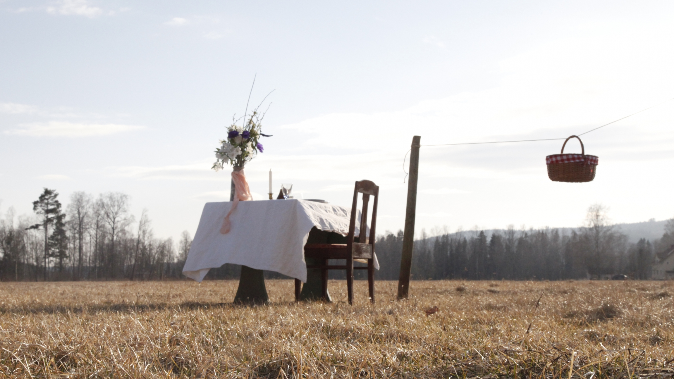 A table and chair in a meadow