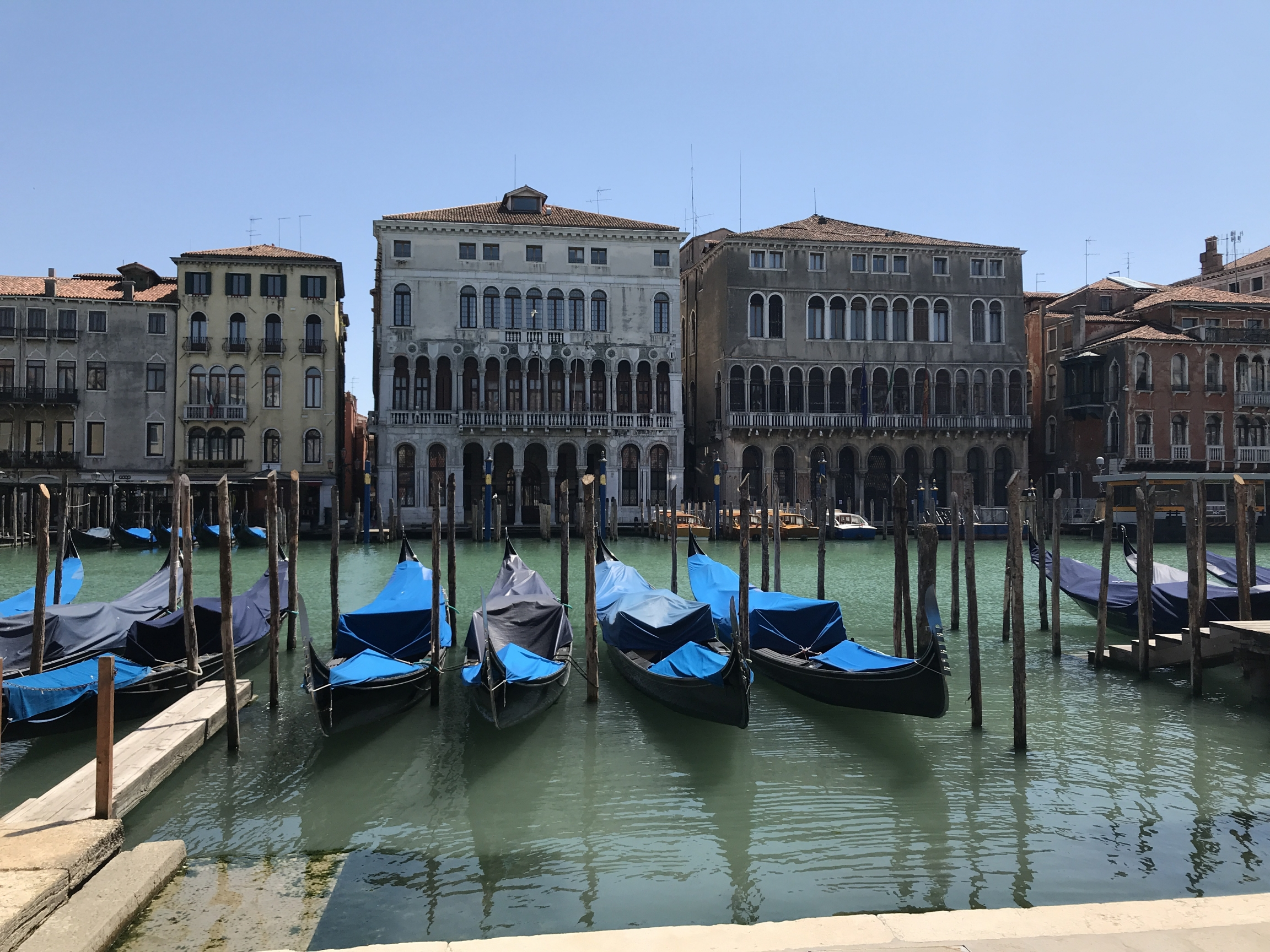 The area around the Rialto Bridge, on the Grand Canal in Venice, Italy, has been quiet since the country's lockdown went into effect.