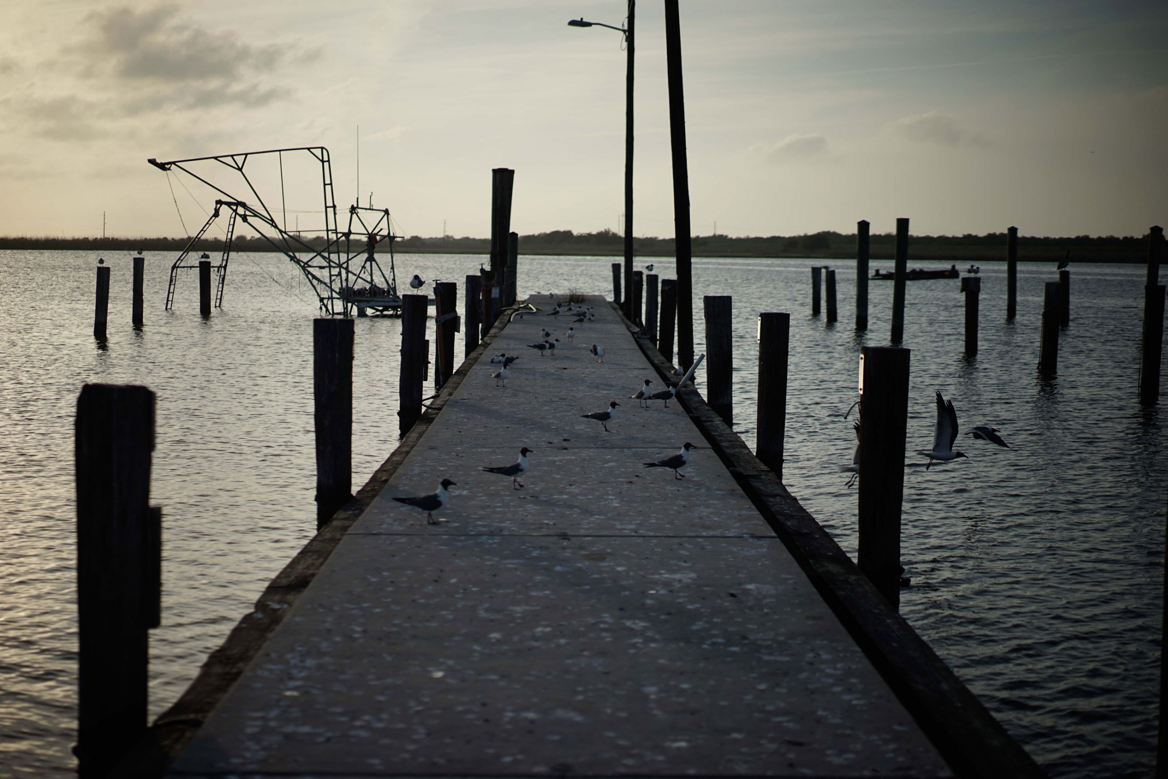 An older dock is shown extending out into the Mississippi River.