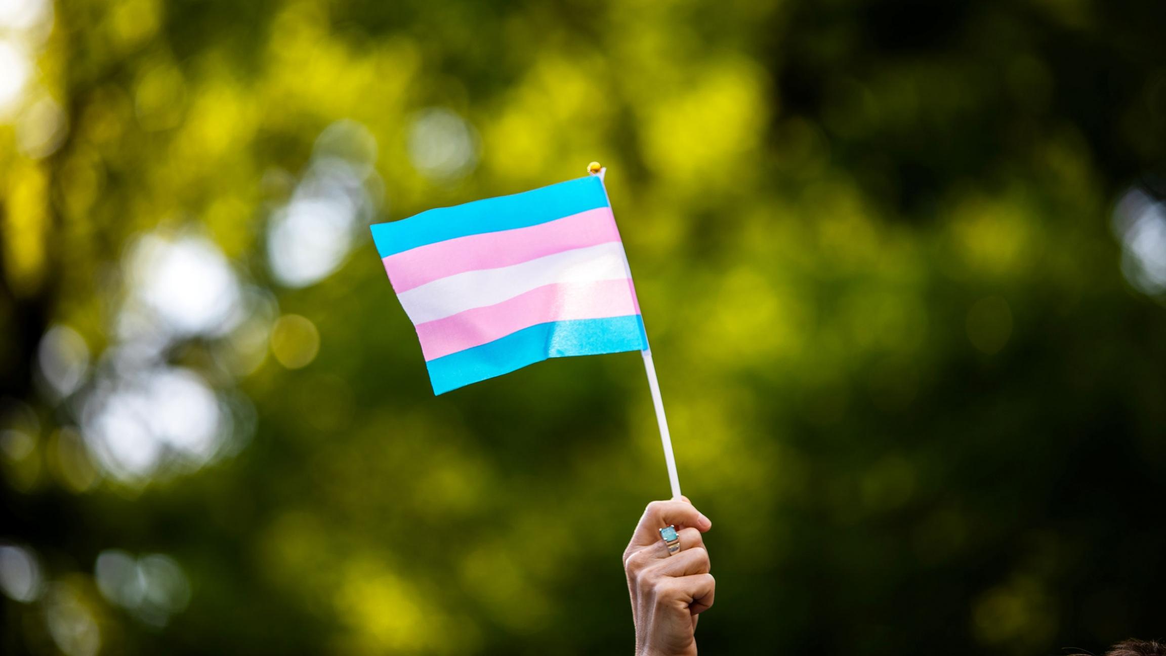 A hand holds a transgender flag
