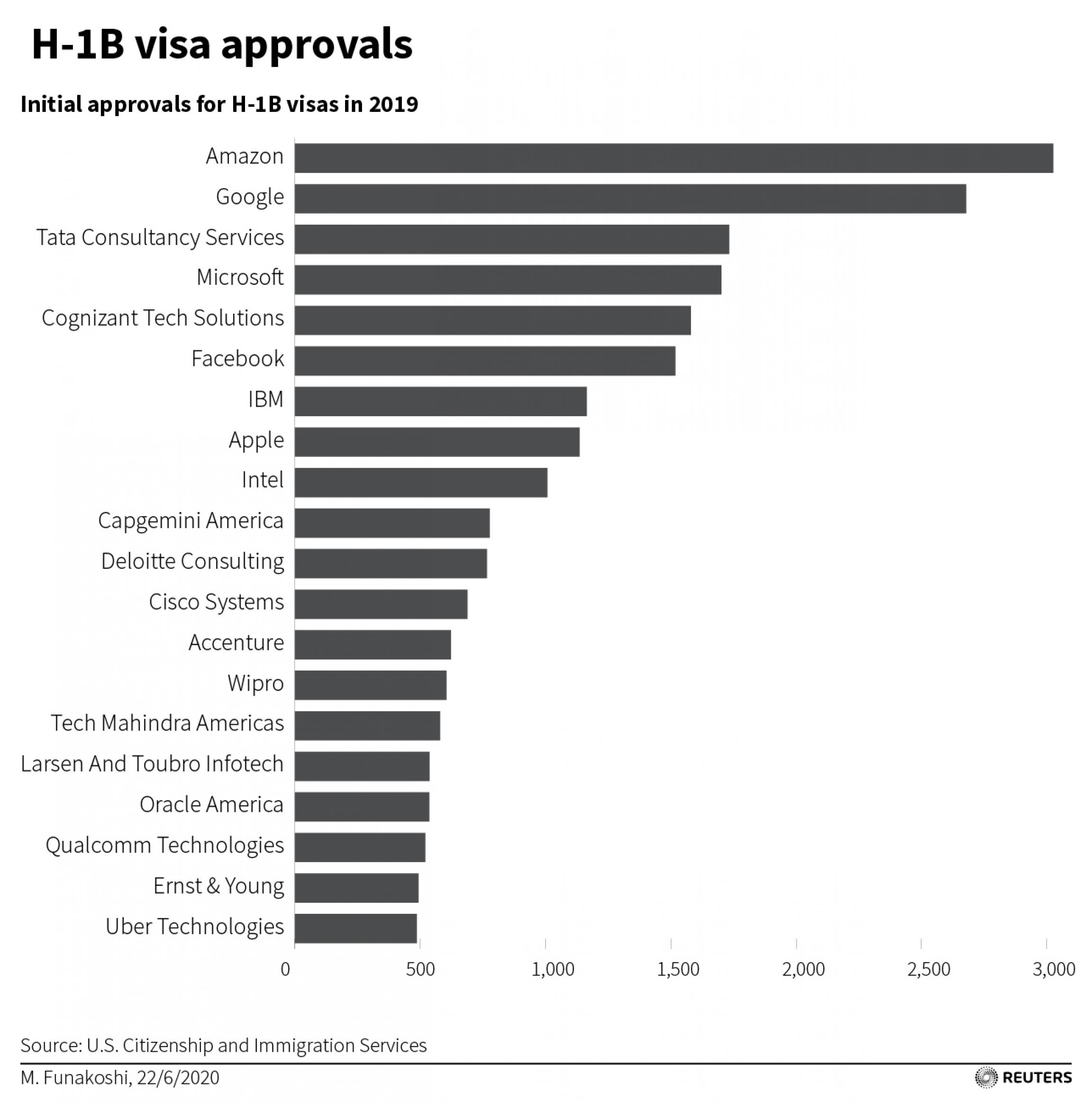 A bar chart showing what companies use H1-B visas.