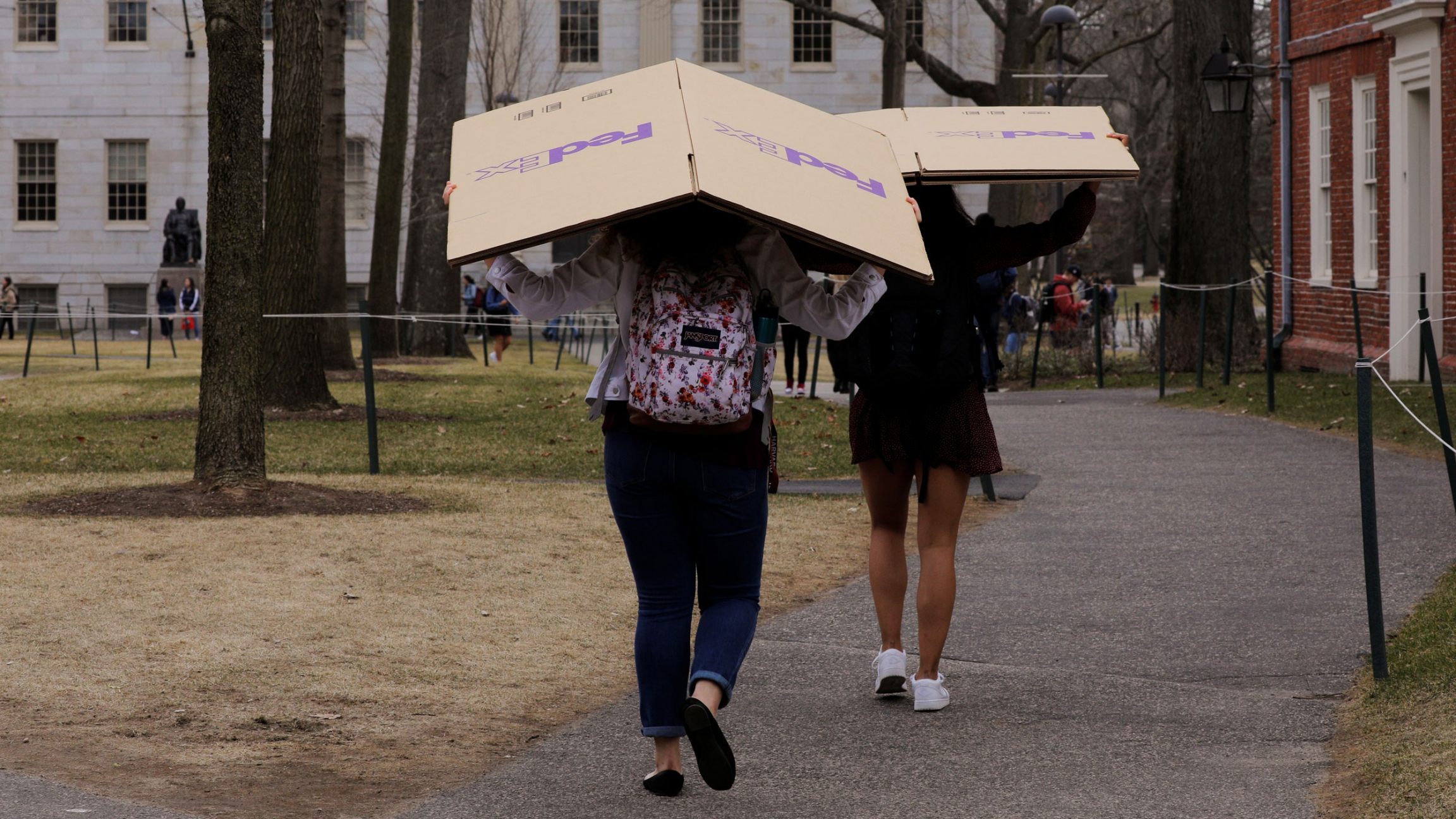 Two women are shown carrying cardboard FedEx boxes over their heads as they walk through Harvard University's campus.