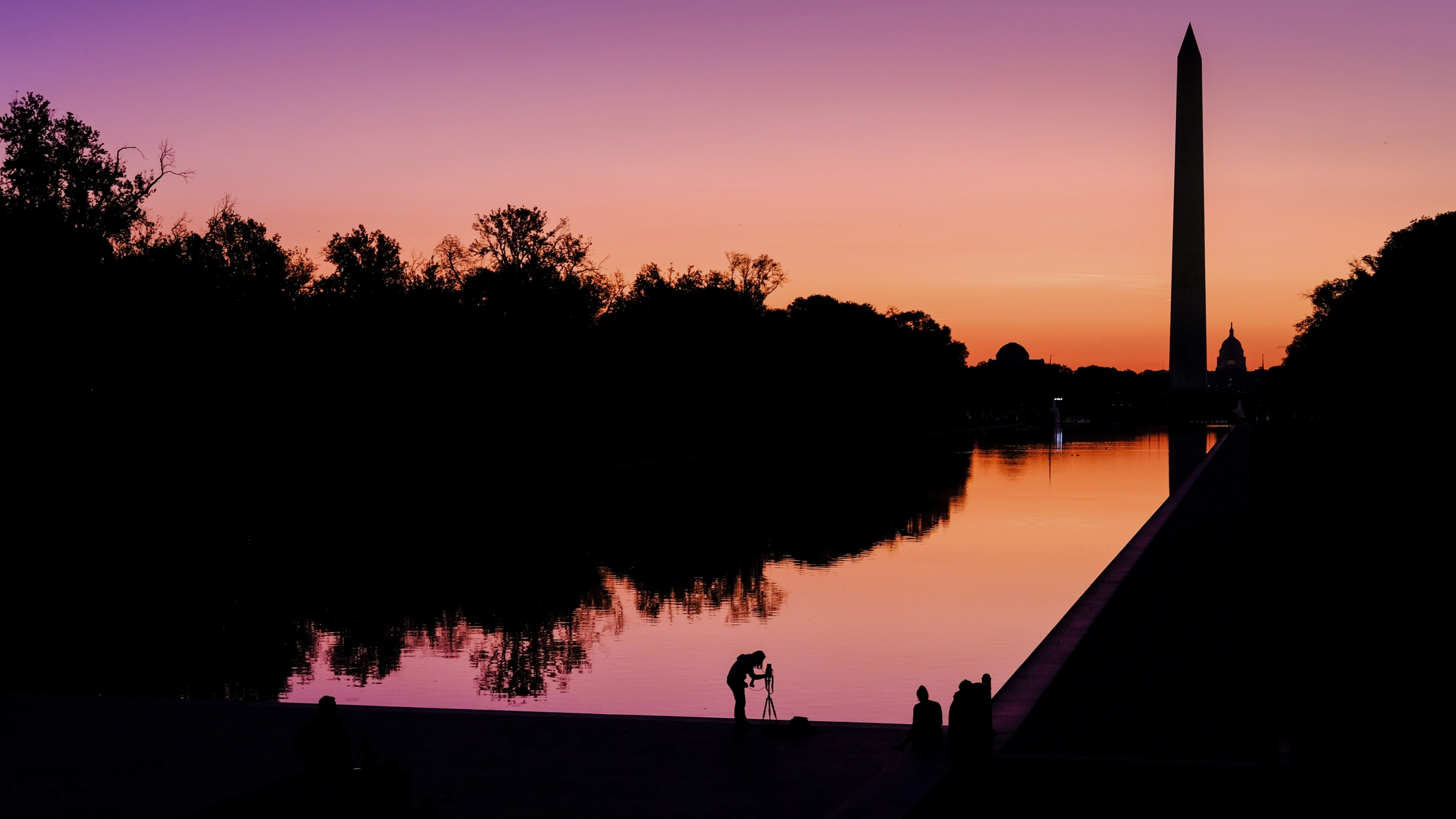 A pink and orange sunset along the National Mall in Washington DC with silhouetted trees