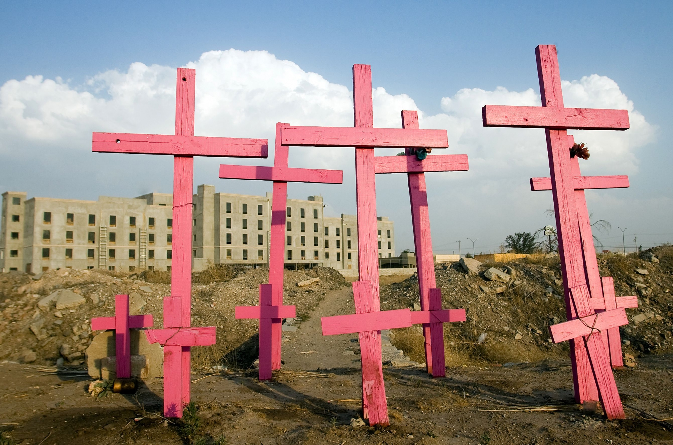 Bright pink crosses used to memorialize where bodies were found.