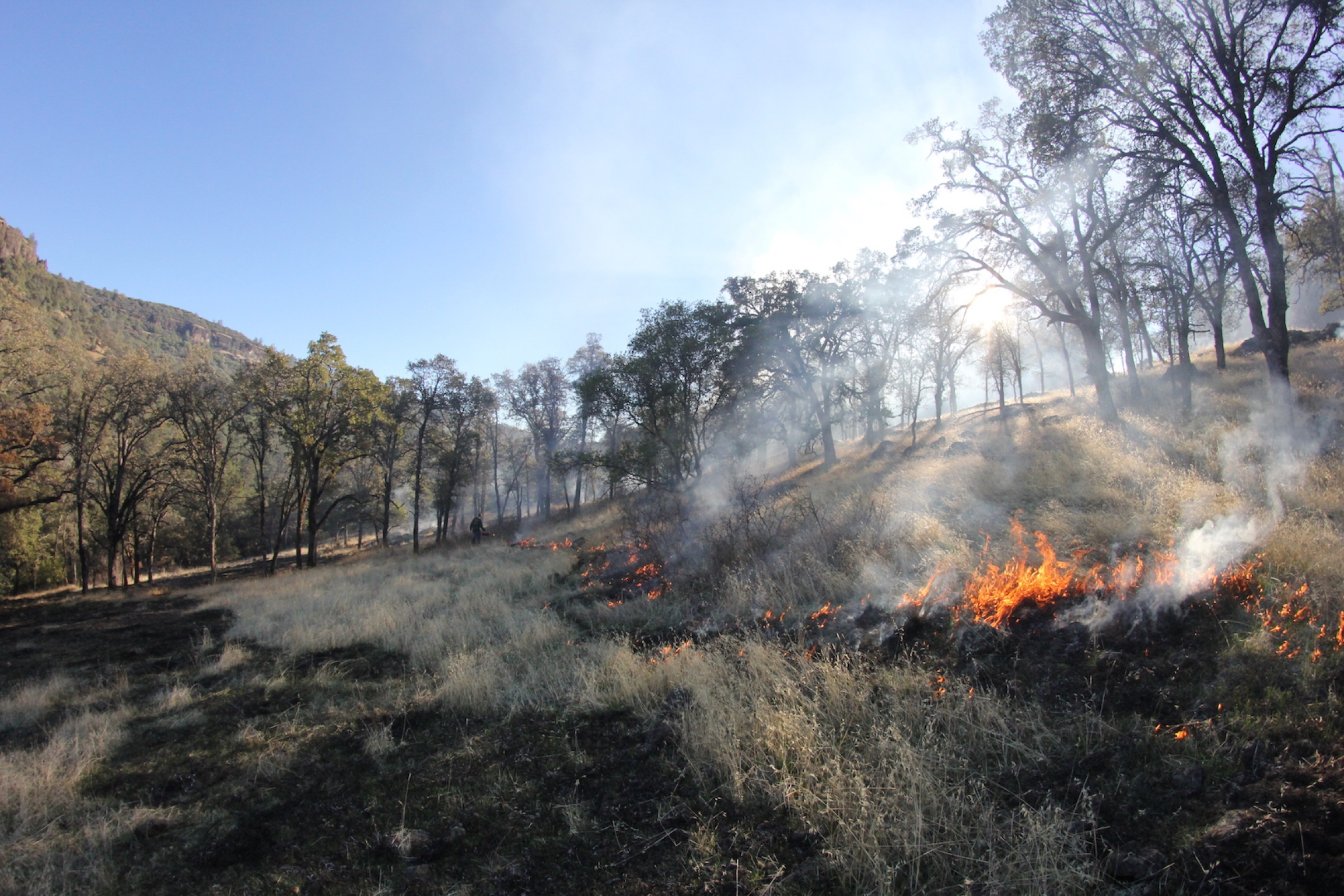 A fire burns with blue and gray patches in a field