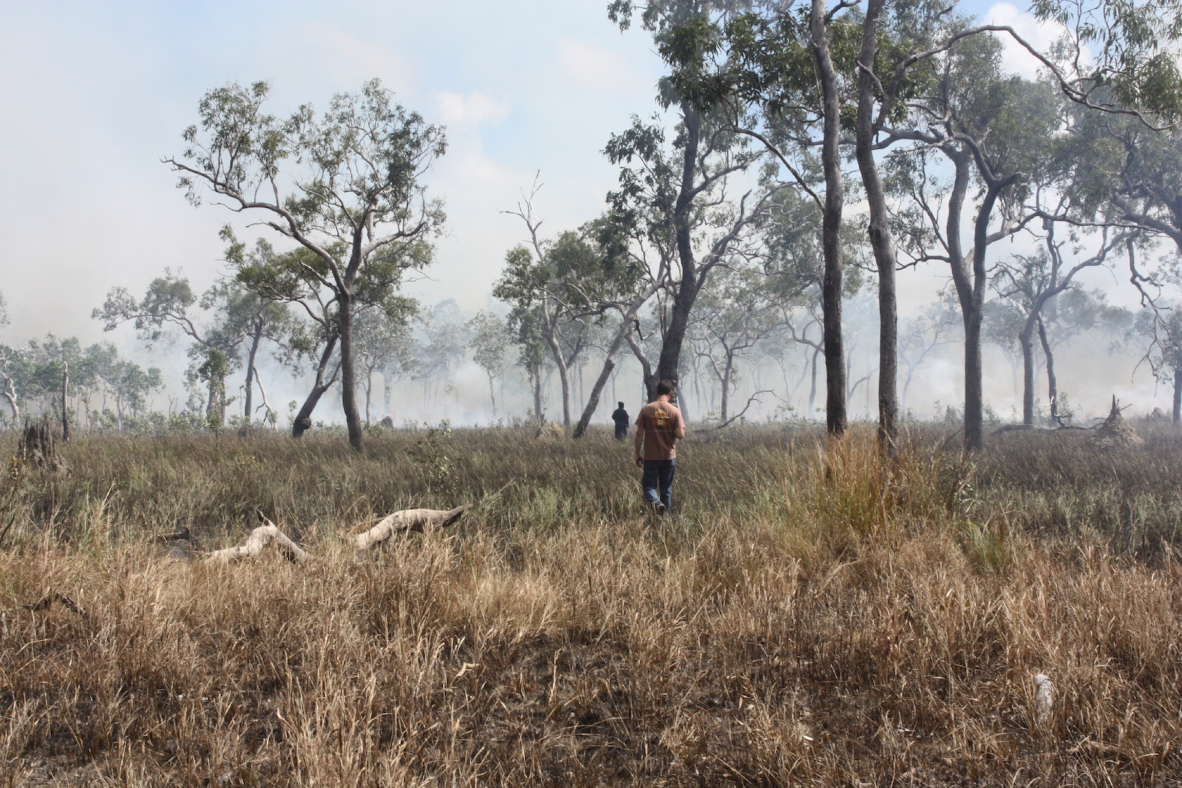 A man walks in dry patchy fields to set a controlled fire.