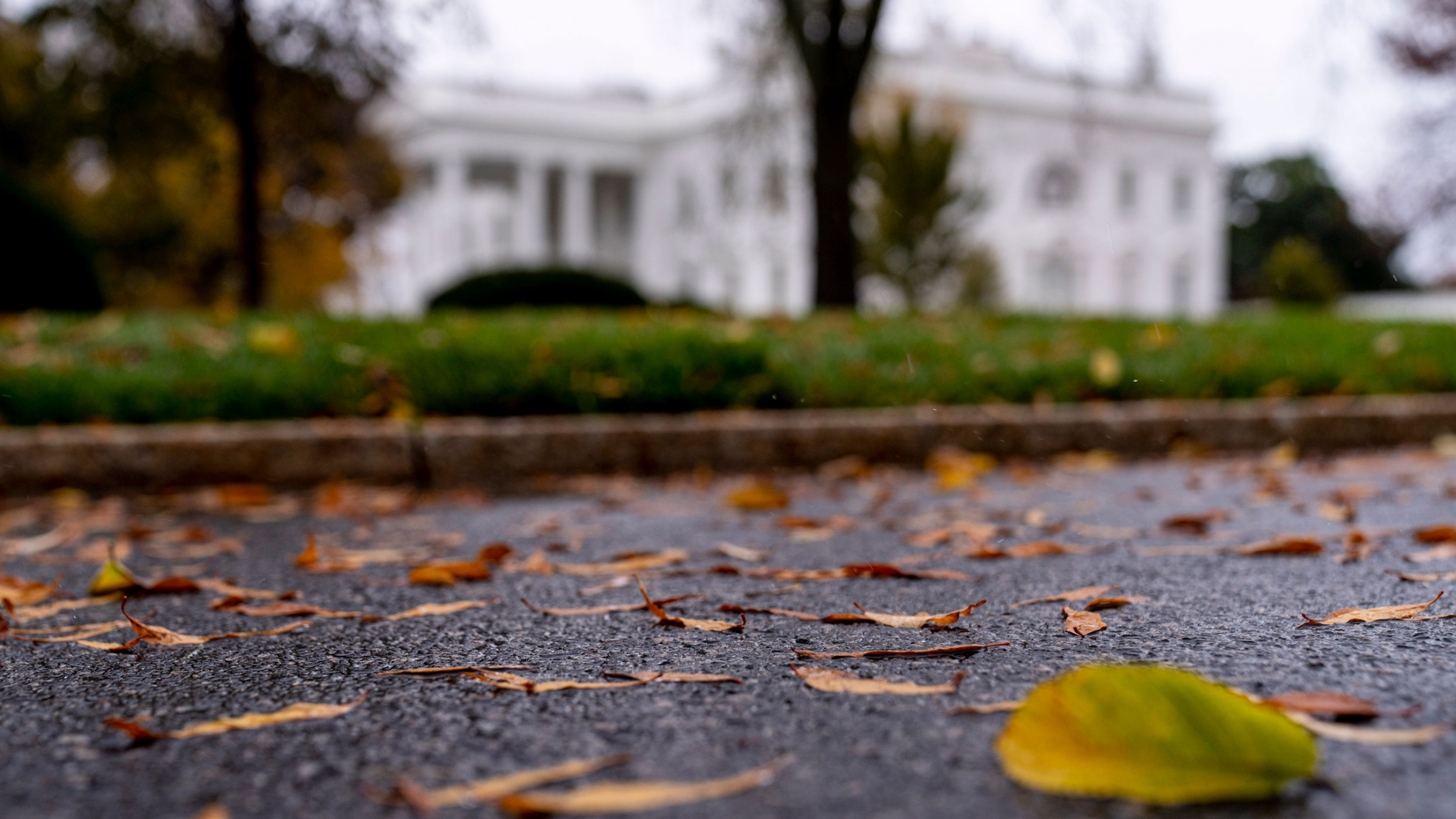 Leaves lie on the ground in focus with the White House in the distance in soft focus.