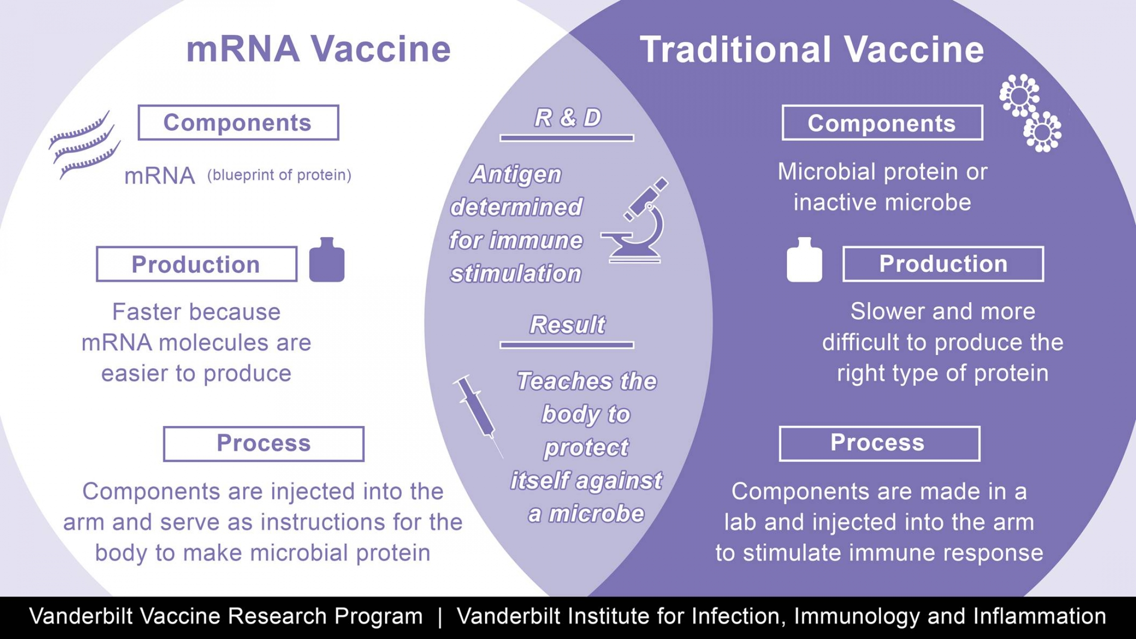 Diagram showing the differences between an mRNA vaccine and a traditional vaccine (and the area of overlap as well)