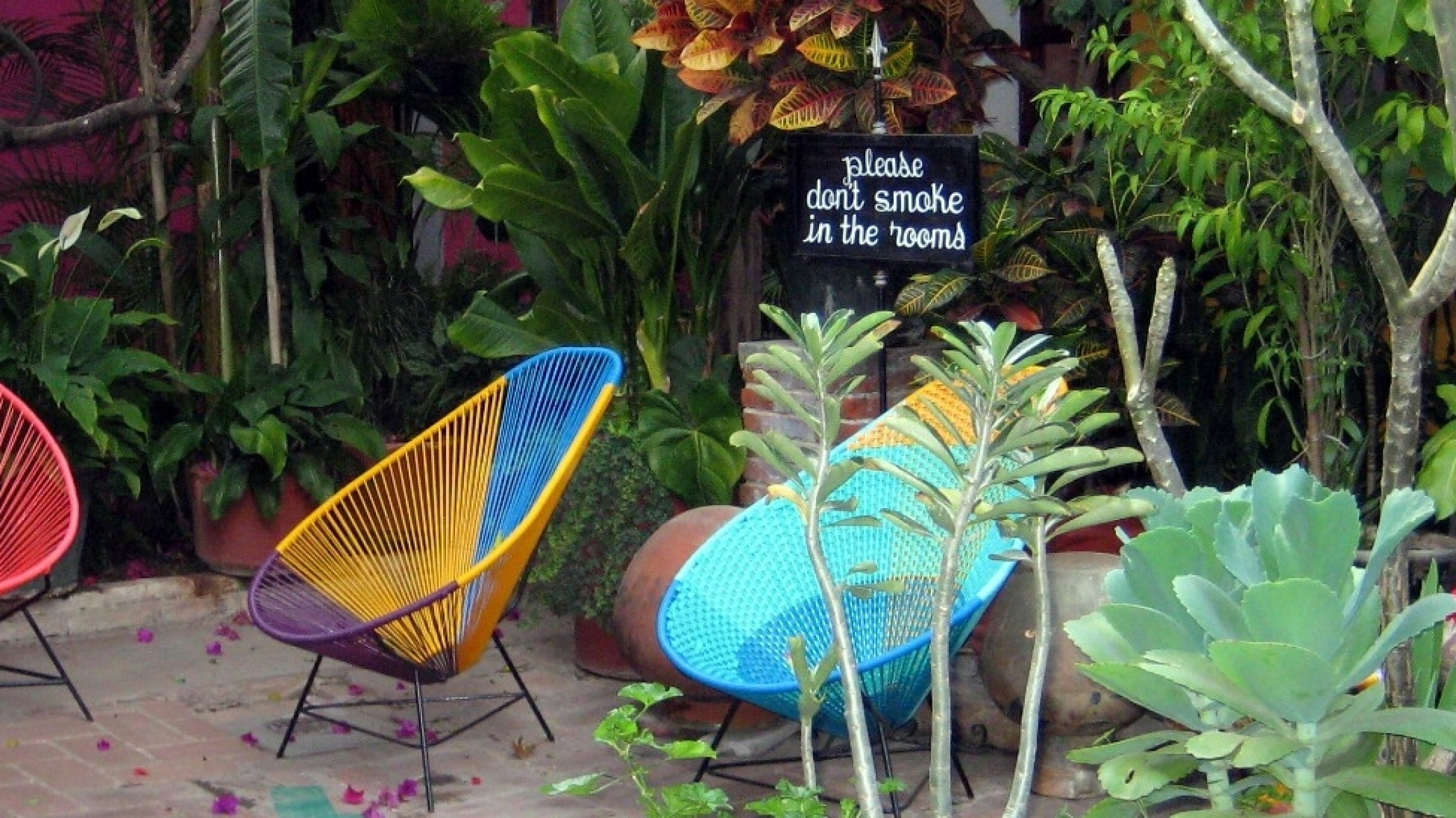 A colorful patio with chairs and greenery and a no-smoking sign