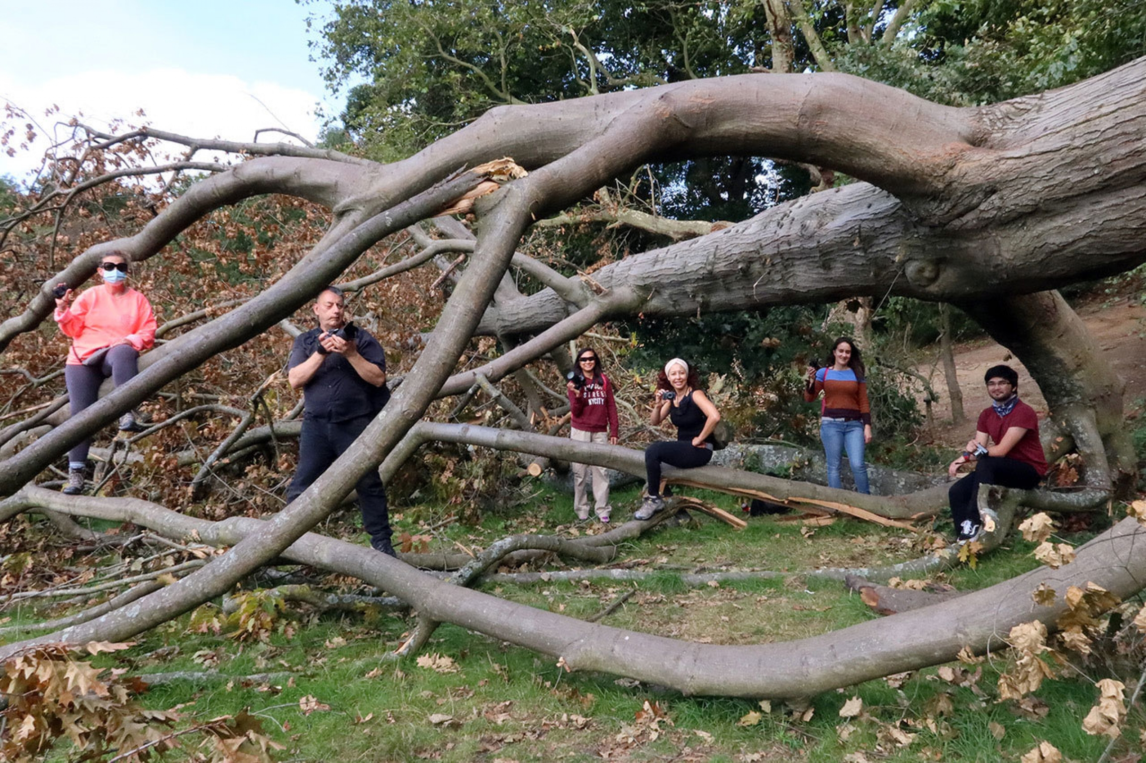 A small group of people are shown standing near or siting on a large tree that has fallen over, each holding a camera.