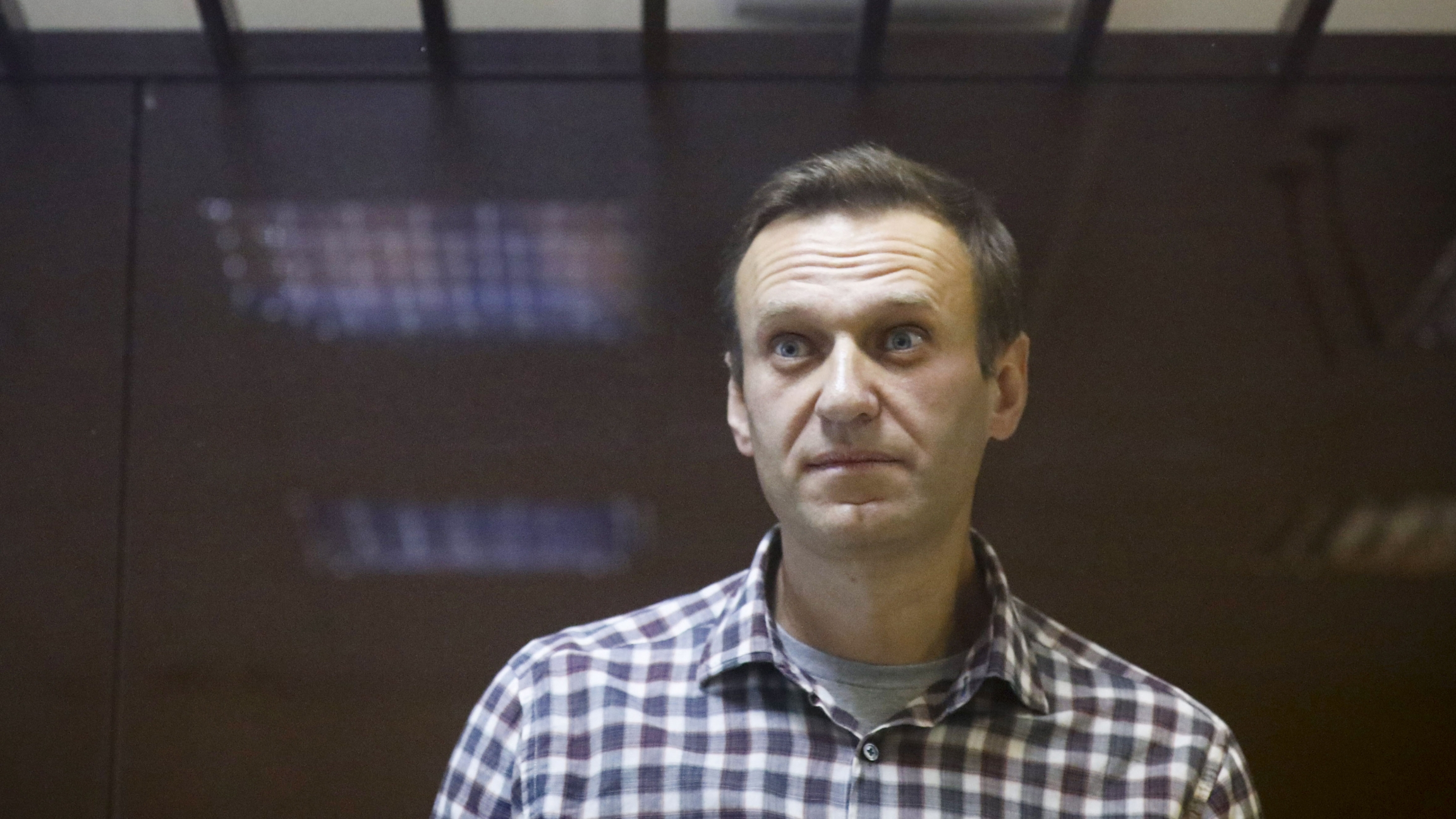 Alexei Navalny wears a plaid shirt and looks a bit startled with his eyes widened at the camera.