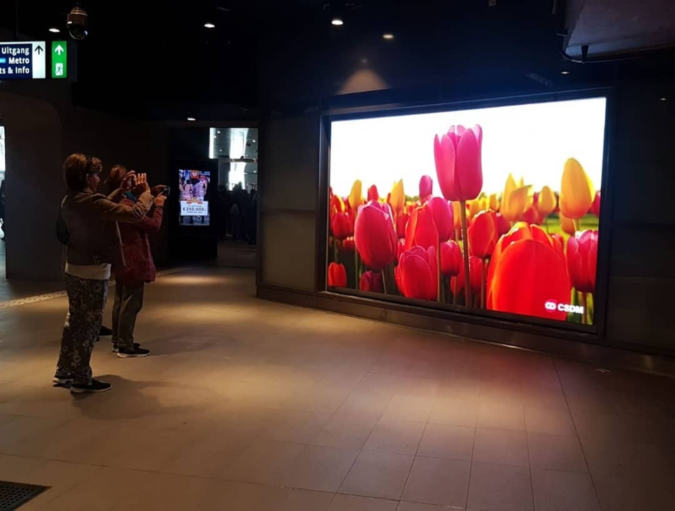 An ad for colorful tulips shines on a large-screen TV in a subway.