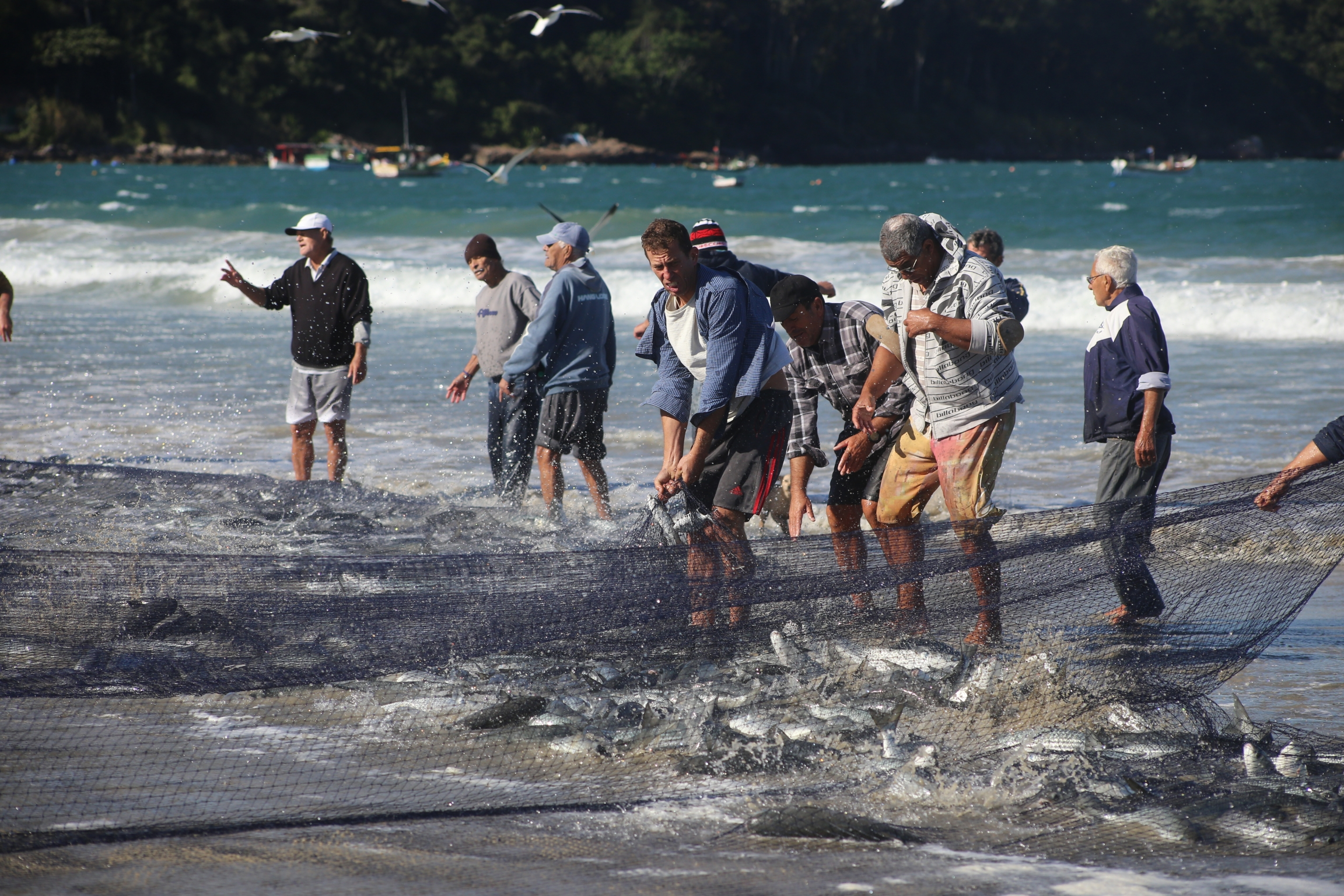 Fisherfolk pull in the net from the sea in Pantano do Sul, Brazil.