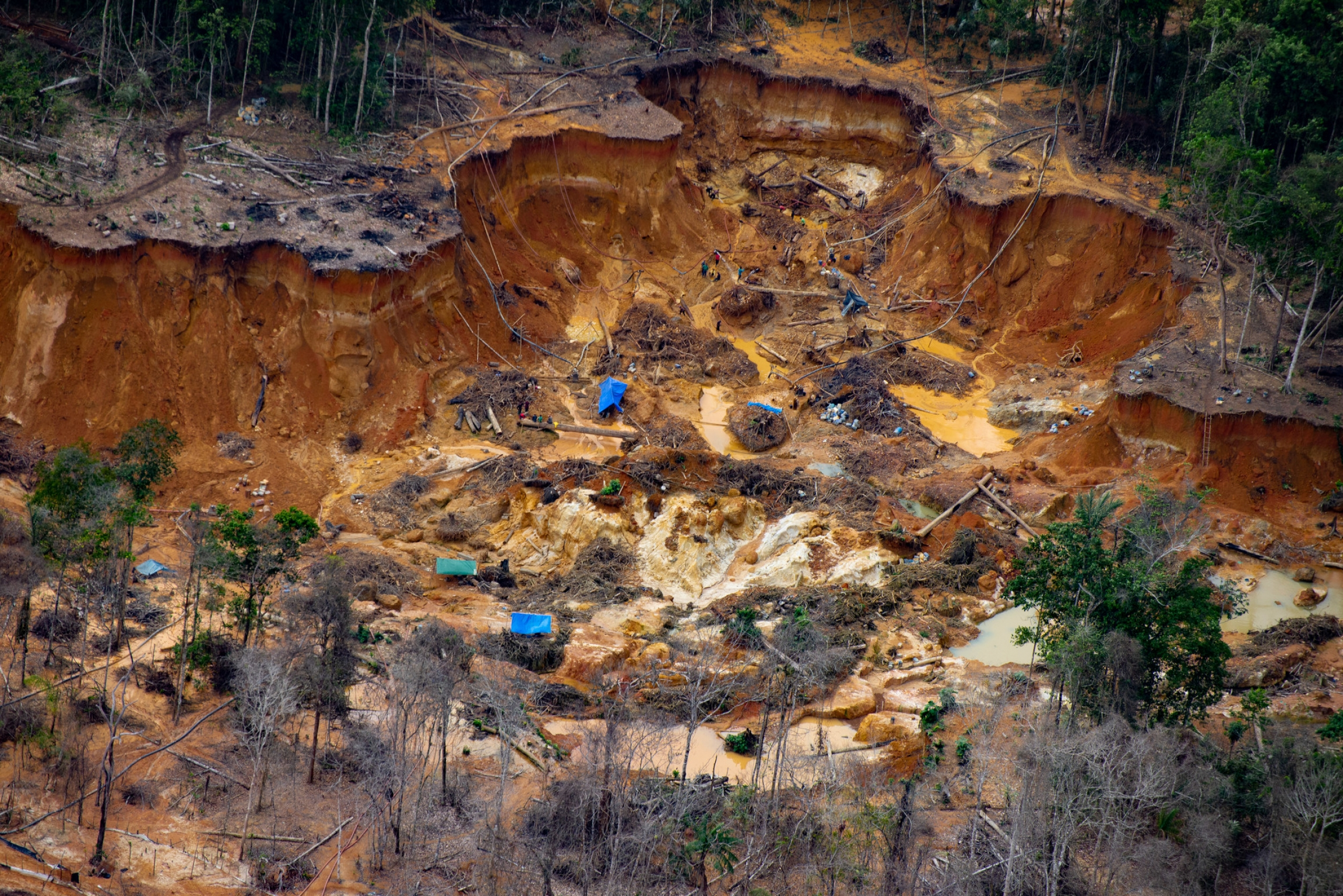 An illegal mining site in the Uraricoera River area of Yanomami land.