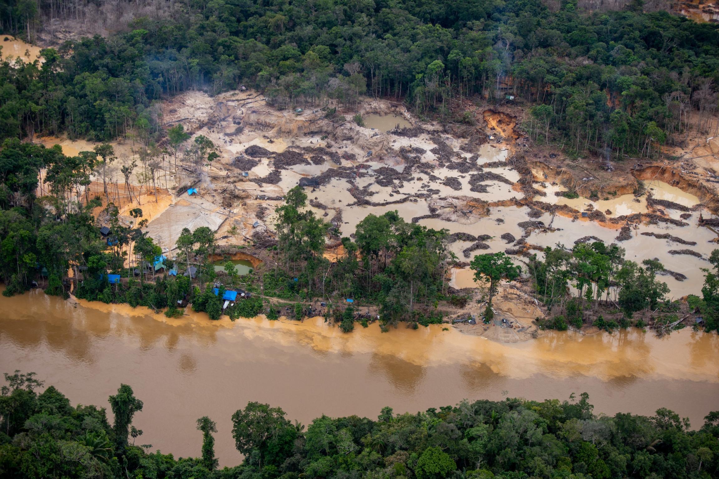 Wildcat mining along the Uraricoera River, in Yanomami Territory.