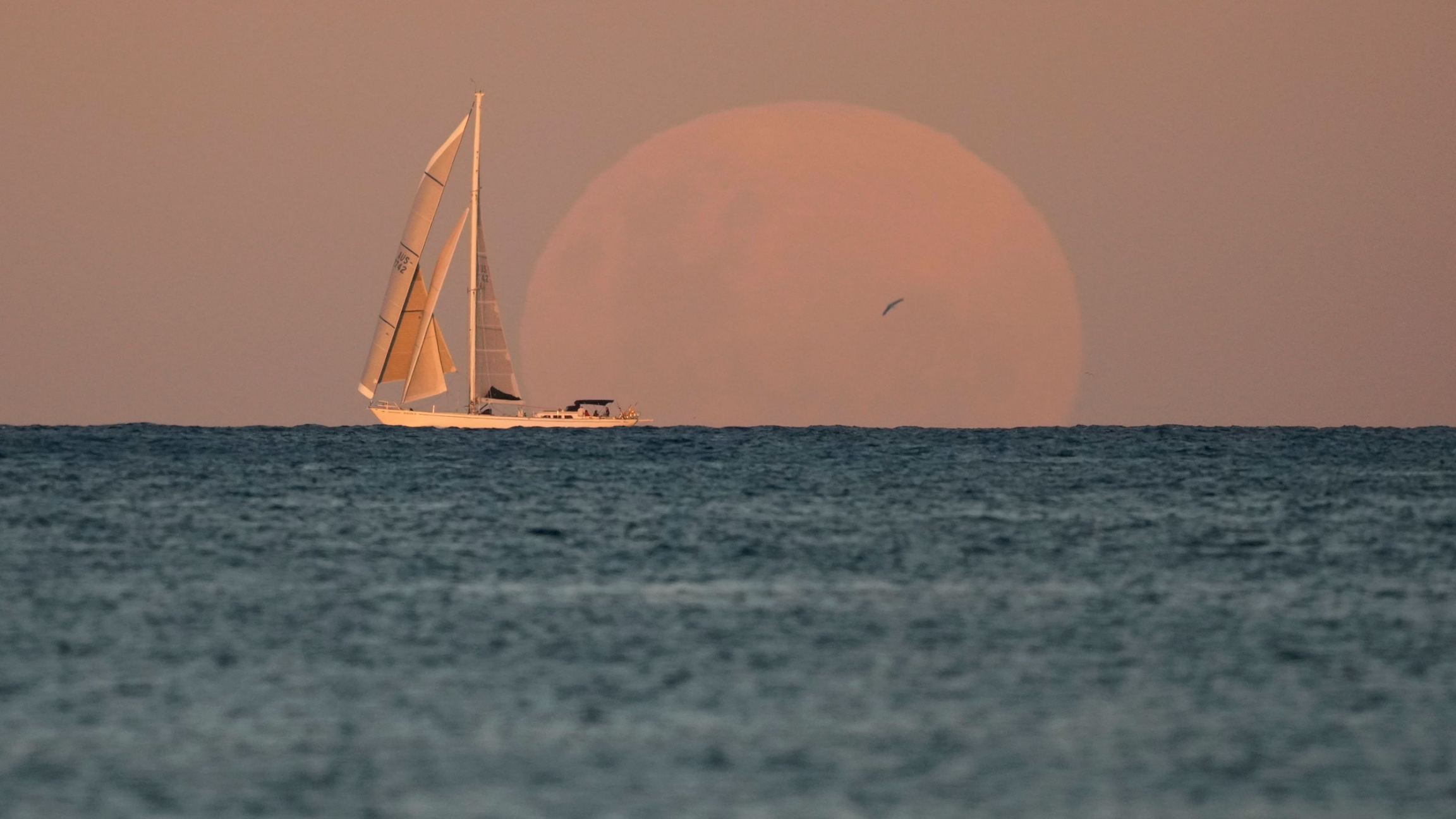 A boat with its sails up is shown at the horizon line during golden hour as a large orange moon is shown behind it.