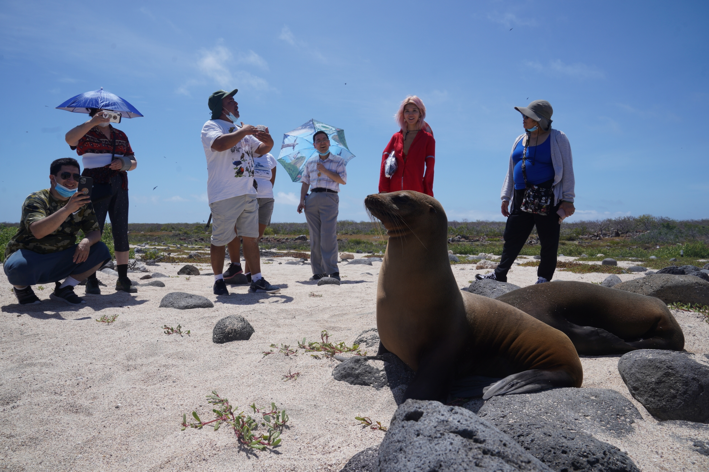 Tourists learn about the lives of sea lionswhile on a visit to North Seymour Island on May 9, 2021.