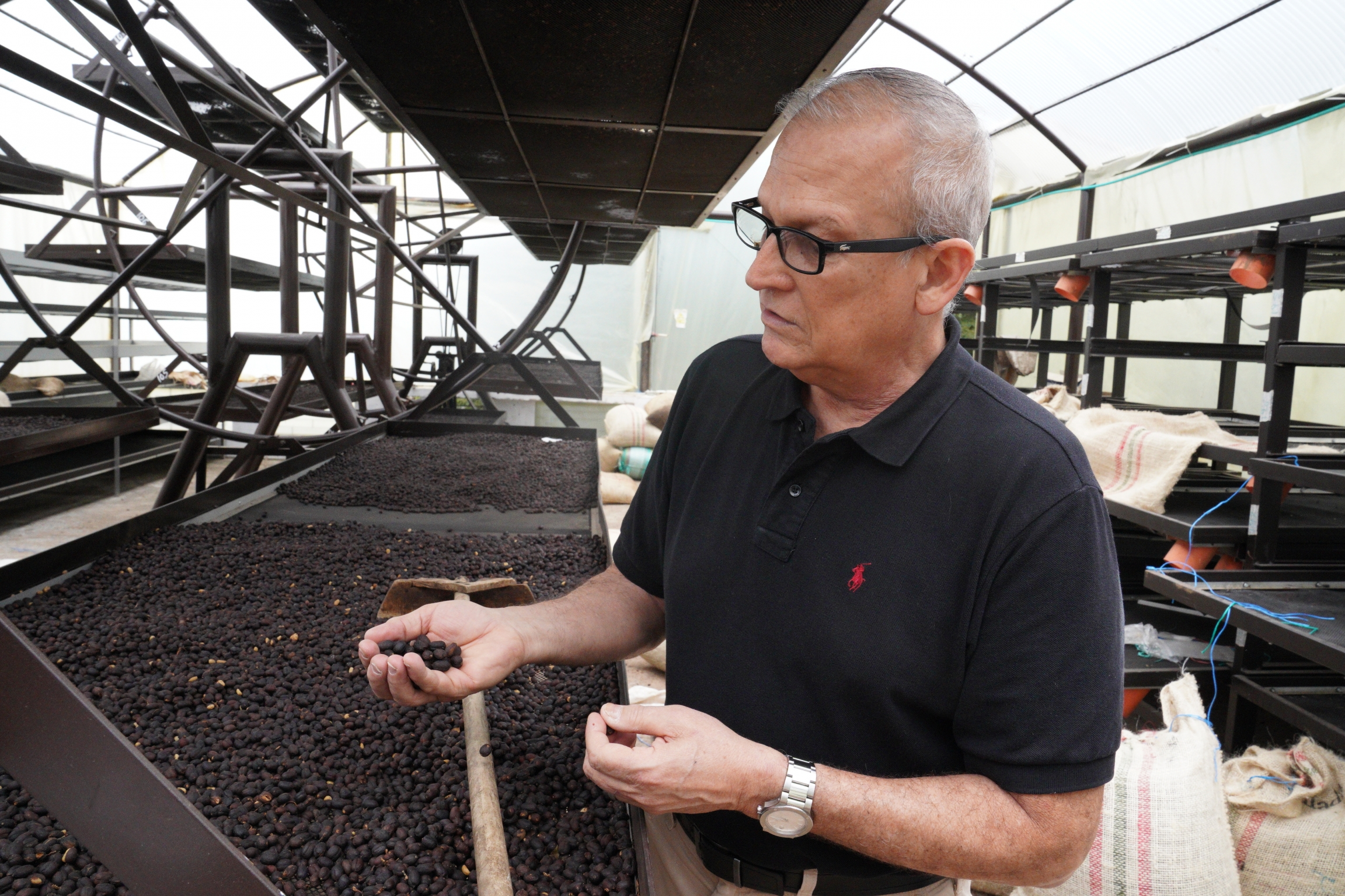 Mauricio Zuñiga checks out a batch of coffee beans that are being dried up at the Immaculada farm near Cali, Colombia, on May 27.