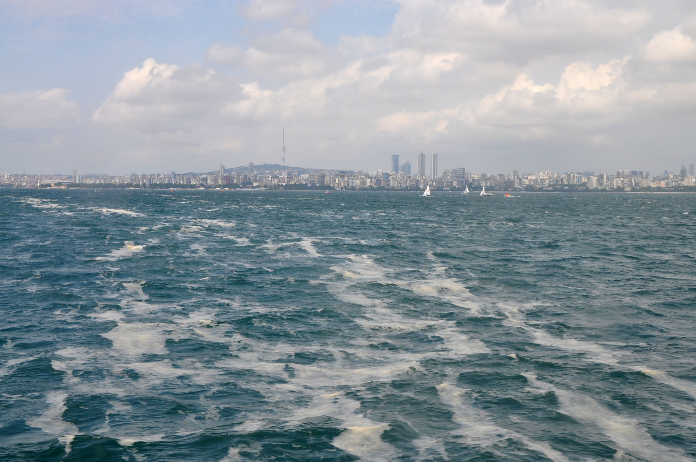 Threads of sea snot, pushed into open waters by the wind, float in front of the Istanbul skyline.
