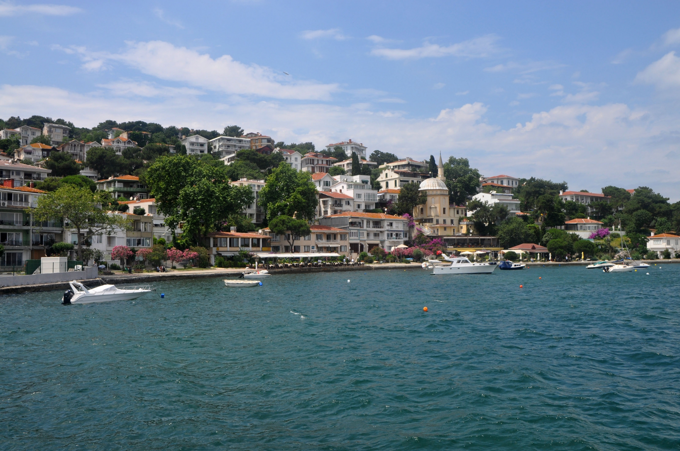 The island of Büyükada in the Marmara Sea, a popular summer destination for Turkish residents and tourists alike. The sea snot outbreak this summer closed beaches for swimming and turned many off from a local specialty, grilled fish.