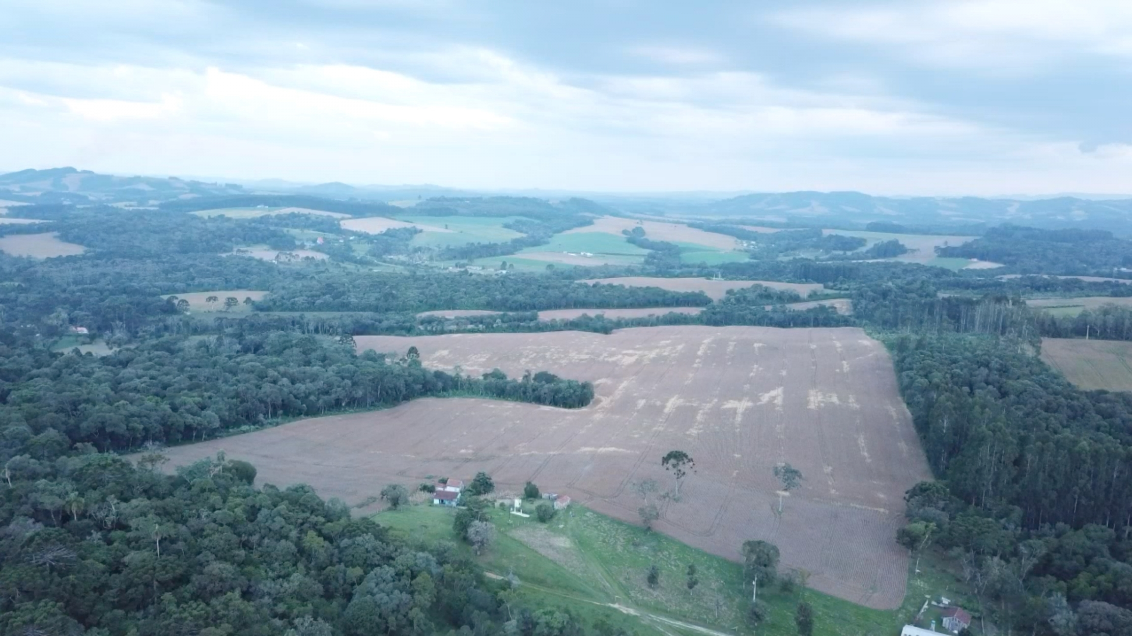 The size of the faxinal'scommunal land in Marcondes in the countryside of the Brazilian state of Paraná has shrunk to a sixth of what it once was —in part because of the huge growth in soy, according to farmerTarcísio Maistricz.