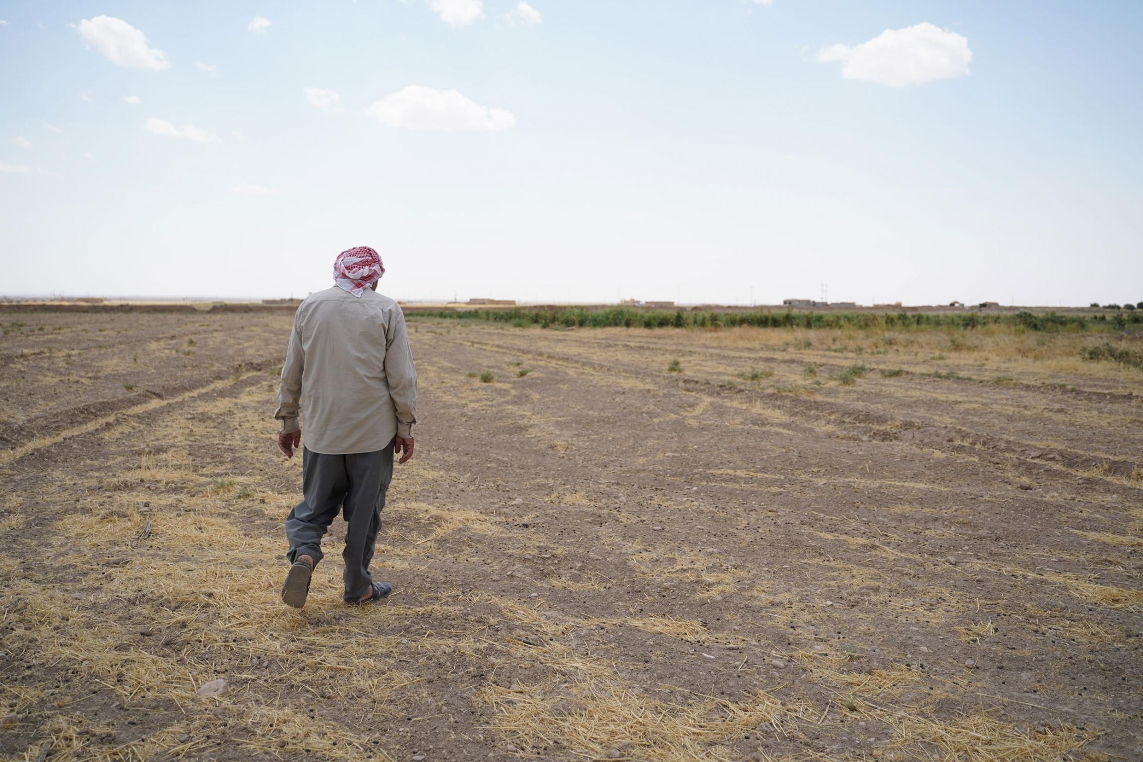 Haji Hassa, a Yazidi farmer from Kuri Jami village in Sinjar, August 2021.
