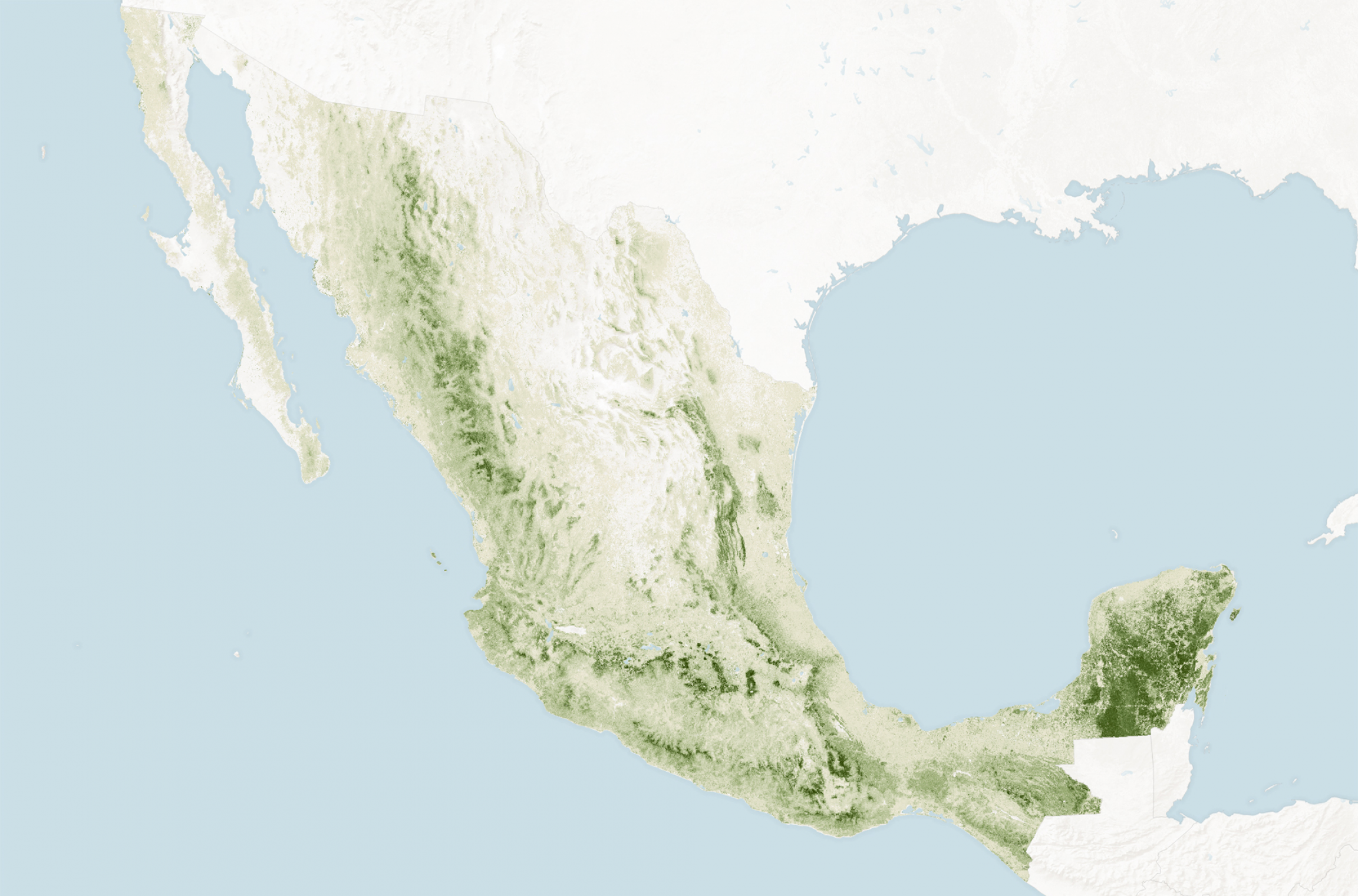 Map of Mexico's forests