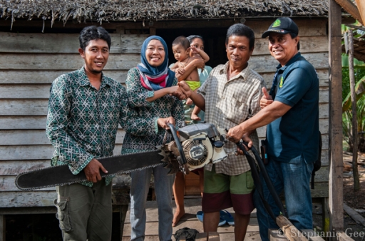 Chainsaw buyback in Borneo