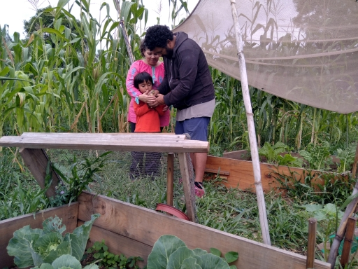 A family works in a garden together.