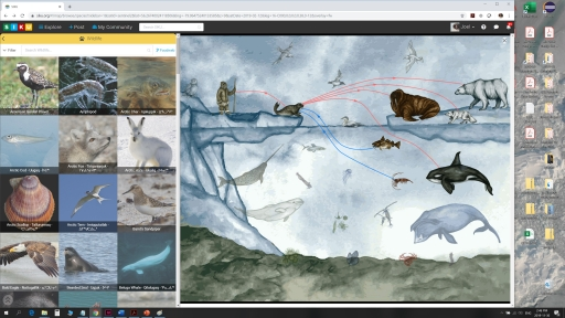 Screenshot shows wildlife species profiles and food web