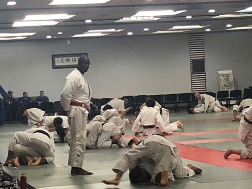 Raymond Demoniere, 51, is a judo instructor.