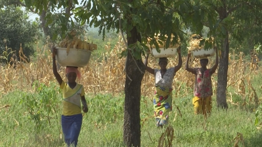 Several women from the village of Kpinchilla return from the farm.