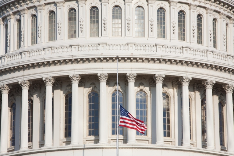 <p>The US Capitol building in Washington DC.</p>