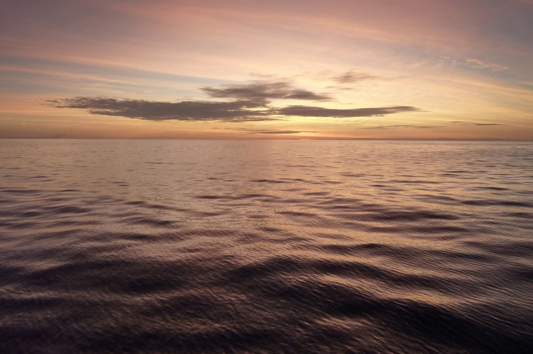 <p>Ocean researchers at Columbia University said acidification of the ocean may be worse today than during the four major mass extinctions in history due to global warming.</p>