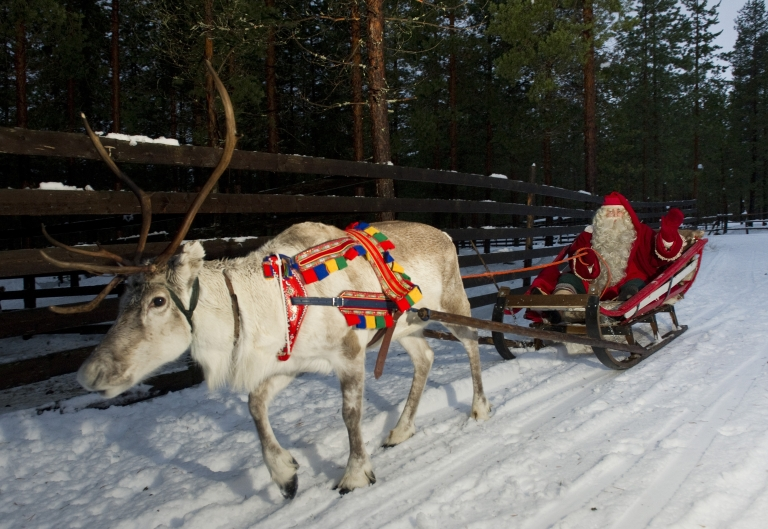 <p>A new study finds that reindeer eye color changes with the seasons.</p>