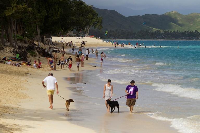 <p>Kailua Beach park in Kailua, Hawaii.</p>