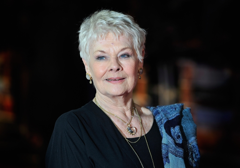 <p>Dame Judi Dench attends the World Premiere of 'The Best Exotic Marigold Hotel' at The Curzon Mayfair on February 7, 2012 in London, England. (Photo by Gareth Cattermole/Getty Images)</p>