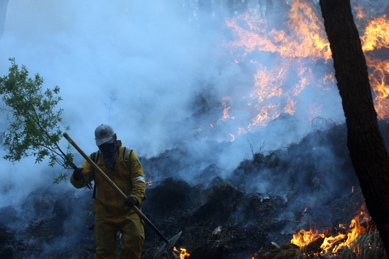 <p>Wildfires like the one seen here in  'La Primavera' forest in Guadalajara, Mexico, will continue to rise as climate change continues.</p>