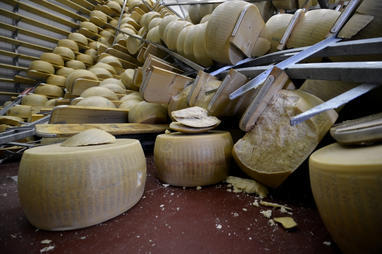 <p>New study suggests cheese production dates back 7,500 years.</p>