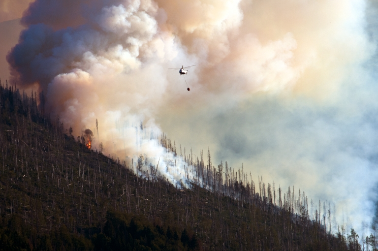 <p>A wildfire rages in the American West.</p>