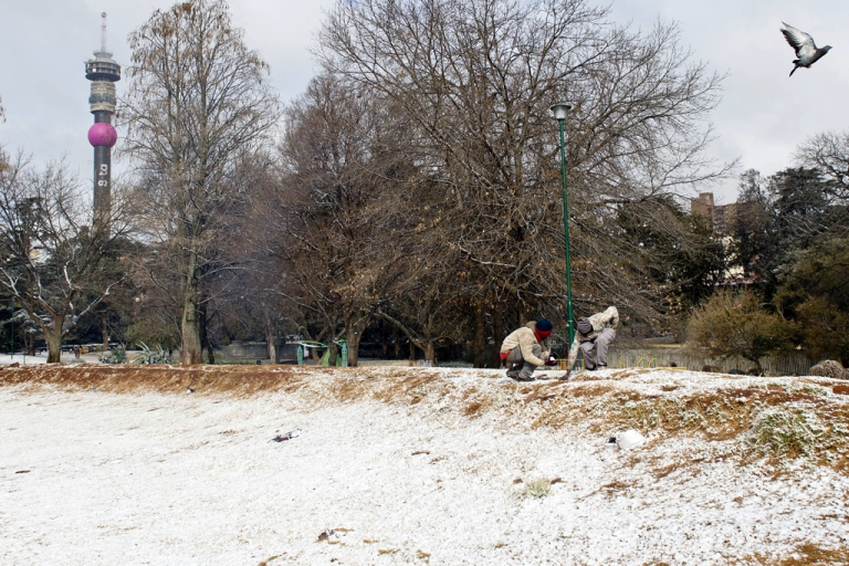 <p>Two people play with snow in a park on August 7, 2012 in Johannesburg. Snow falls annually in the mountains of South Africa and Lesotho, which even hosts a ski resort. But some high-altitude border posts between the countries received so much snow today that they were forced to close.</p>
