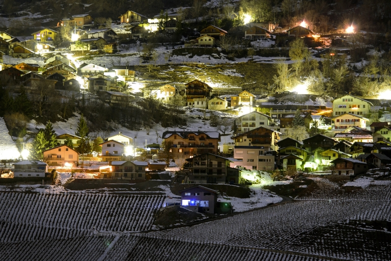 <p>A shooting in the tiny Swiss mountain town of Daillon has left three people dead and two injured.</p>