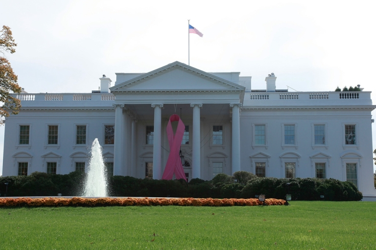 <p>A large pink ribbon hangs from the North Portico of the White House on October 26, 2009 in Washington, DC. While the US has fought against cancer for decades, the disease's new battleground, reports PRI, is the developing world.</p>