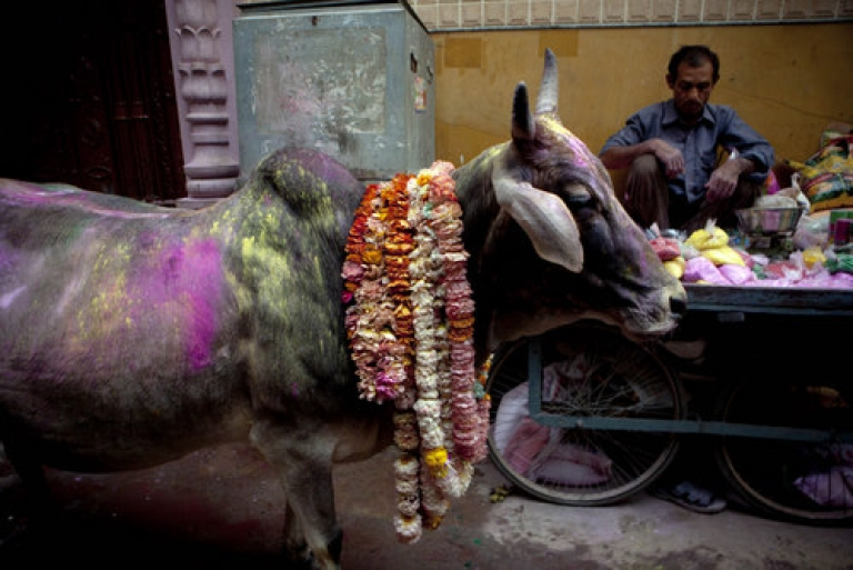 <p>Put your hands up and step away from the burger.  Eating beef will now cost you seven years of rigorous imprisonment in the central Indian state of Madhya Pradesh -- part of the Hindu