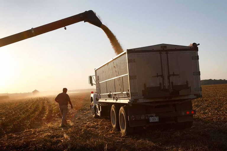 <p>Bill Raben loads a grain truck as he helps to harvest corn on land he farms with his brother October 4, 2008 near Carmi, Illinois.</p>