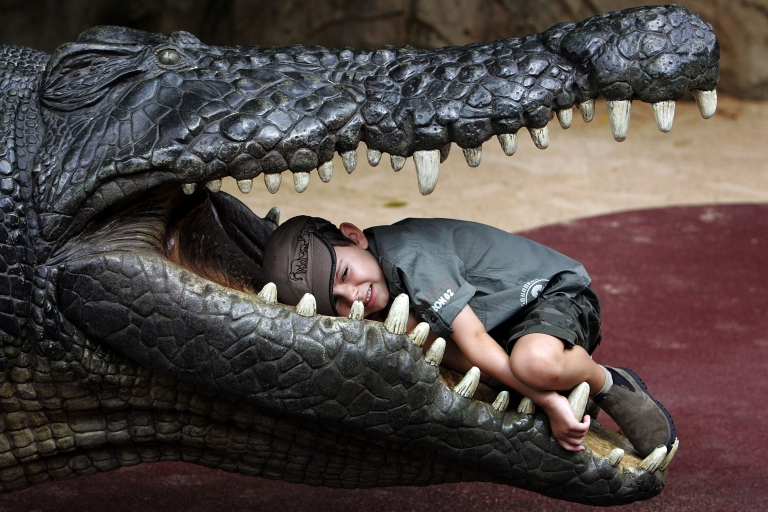 <p>Fossils of an ancient crocodile found in Kenya is largest ever known.</p>