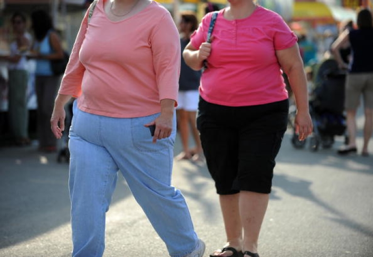 <p>Two overweight women walk at the 61st Montgomery County Agricultural Fair on August 19, 2009 in Gaithersburg, Maryland.</p>